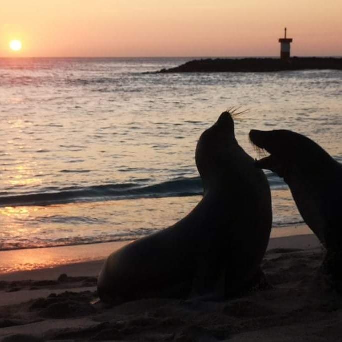 The Galápagos Islands 2021 – Part I – SanCristóbal