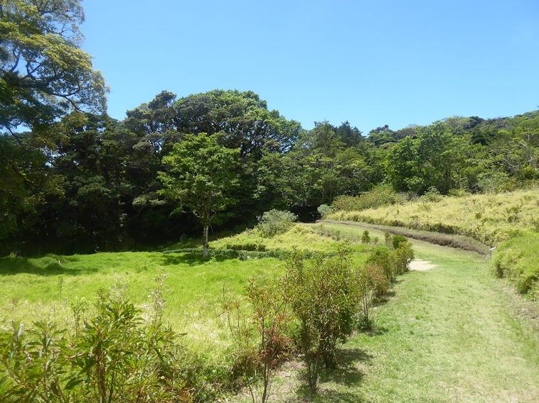 Costa Rica 2021 –Monteverde